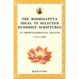 佛典中的菩萨思想:理论与实践的发展