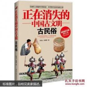 正在消失的中国古文明(全6册):古河渠  古村落 古城 古民俗 古桥 古关隘