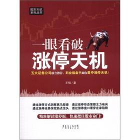 股市天机系列丛书:一眼看破涨停天机