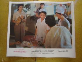 电影剧照  ---  锅碗瓢盆交响曲     1套8张(8开)全