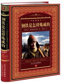 世界文学名著典藏:钢铁是怎样炼成的(全译本)