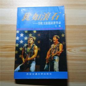 犹如滚石:美欧主流摇滚菁华录 一版一印 好品 内有很多歌词原文