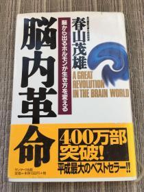 日本原版:脑内革命