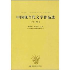 中国现当代文学作品选(下) 谢昭新 9787533634308