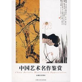 中国艺术名作鉴赏 王同兴 吉林文史出版社 9787807025399