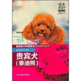 爱宠嘉年华系列丛书:聪明伶俐·贵宾犬(泰迪熊)