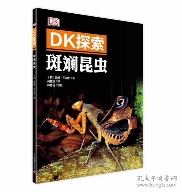 一手正版,DK探索 斑斓昆虫