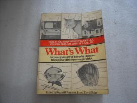 What\s What: A Visual Glossary of the Physical World 什么是什么:一个物理世界的视觉词汇表 16开【128】