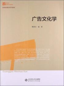 广告文化学/新世纪高等学校教材·新闻传播学系列教材