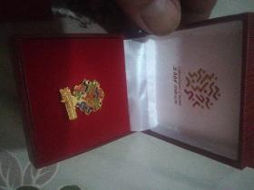 2009中国山东.中华人民共和国第十一届运动会志愿者徽章