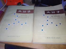 大分子(上下册)--上册是结构和性能,下册是合成.材料和工艺学