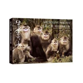 生灵之美:野生动物图文集