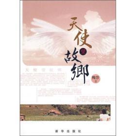 天使望故乡 专著 梅莎著 tian shi wang gu xiang