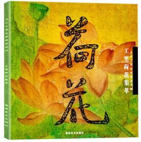 当代工笔名家精品系列:工笔荷花集萃(铜版纸彩印)大12开正版