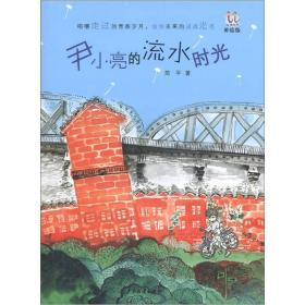淘淘丛书·尹小亮的流水时光(美绘版)