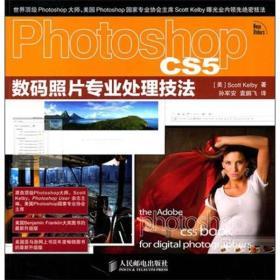 数码照片专业处理技法