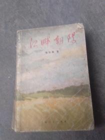 文革阶级斗争小说..江畔朝阳
