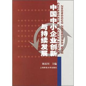 正版图书 中国中小企业创新与持续发展