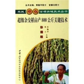 农民增收百项关键技术丛书---超级杂交稻亩产800公斤关键技术