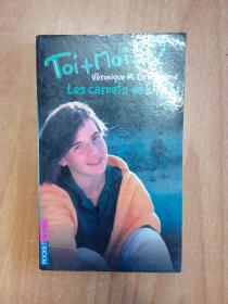 法文原版书:Les Carnets De Lily B (Toi + Moi #5)