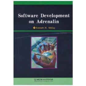 激情式软件开发(英文版)