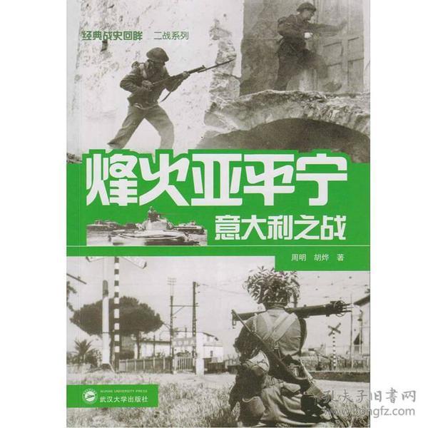 烽火亚平宁:意大利之战