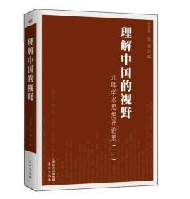 理解中国的视野:汪晖学术思想评论集(二)