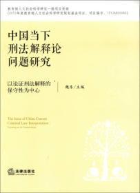 中国当下刑法解释论问题研究