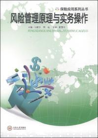保险应用系列丛书:风险管理原理与实务操作