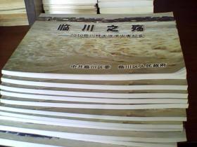 临川之殇---2010临川特大洪涝灾害纪实画册
