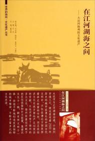 世界的扬州 文化遗产丛书·在江河湖海之间:大运河扬州段文化遗产