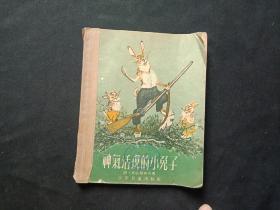 神气活现的小兔子