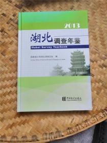 湖北调查年鉴 2013 附光盘