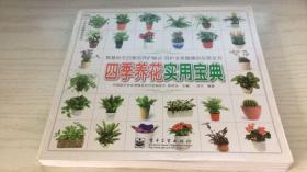 四季养花实用宝典