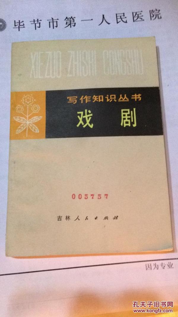 写作知识丛书:戏剧