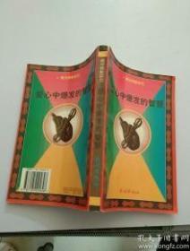 爱心中爆发的智慧:藏传佛教研究 正版