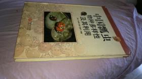 硬精装 中国瓢虫物种多样性及其利用 一版一印(博物学昆虫植物生态亚科图志图谱原色蝴蝶蜻蜓)