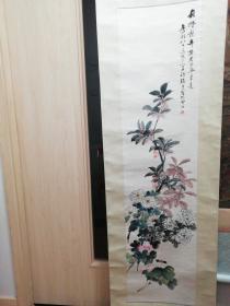 张熊 花卉