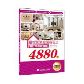 最实用家庭装修设计4880例:客厅电视背景墙