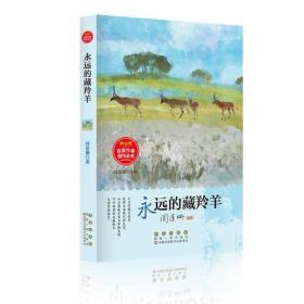 冰心奖获奖作家佳作丛书·永远的藏羚羊