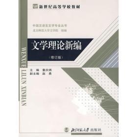 文学理论新编修订版 童庆炳 北京师范大学出版社 9787303034611