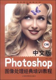 中文版Photoshop图像处理经典培训教程-CS6 卓文 上海科学普及出版社 9787542758859
