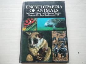 encyclopaedia of animals