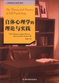 自体心理学的理论与实践