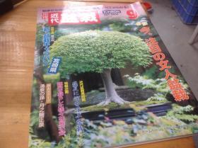 月刊近代盆栽 06.9  文人盆栽