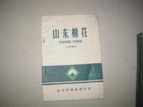 山东棉花 【1975.1】  9181