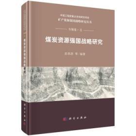 煤炭资源强国战略研究.2
