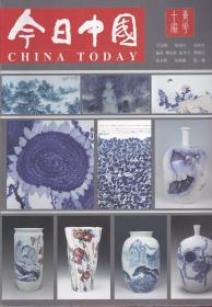 今日中国——青花十家专刊