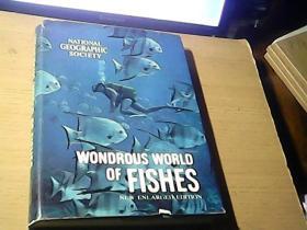 WONDROUS WORLD OF FISHES(富饶的世界鱼类资源)