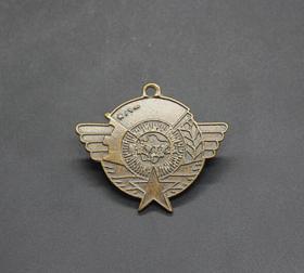 JZ1161红色收藏仿古勋章纪念章解放东北纪念章